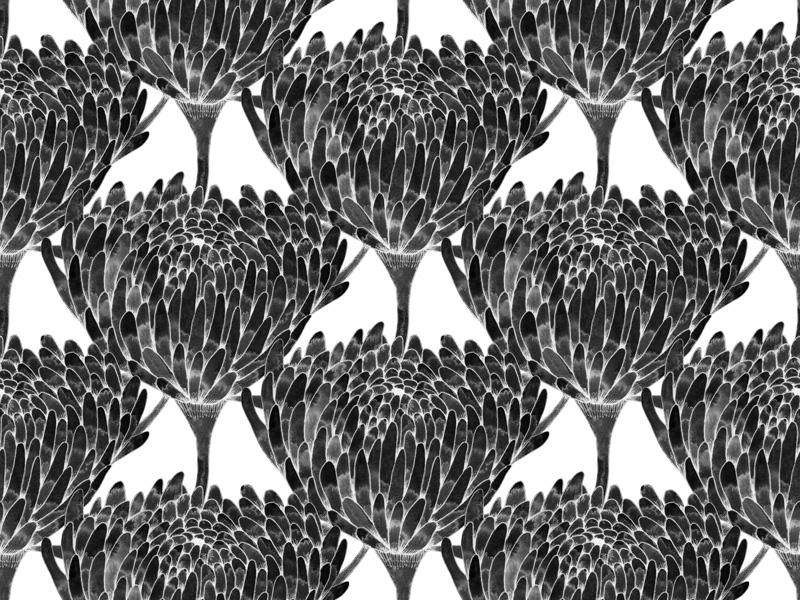 Chrysanthemum Crowd Black by  Floating Lemons Art