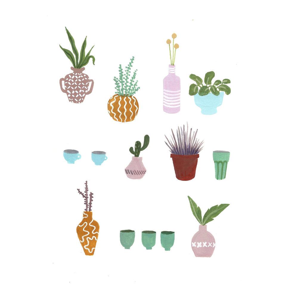 assorted plants square.jpg