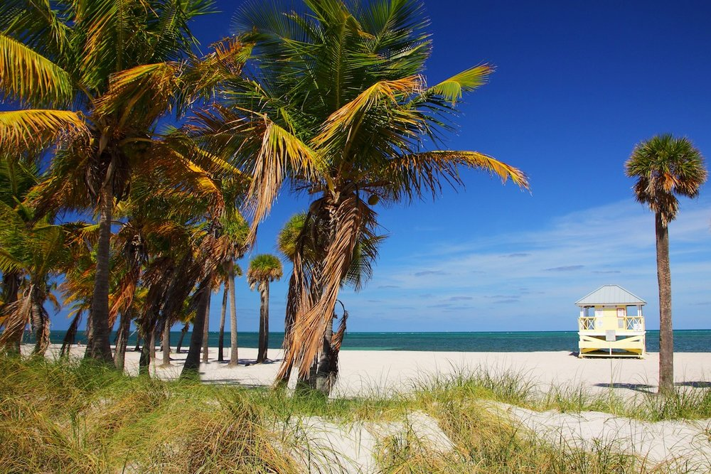 crandon-park-lifeguard.jpg