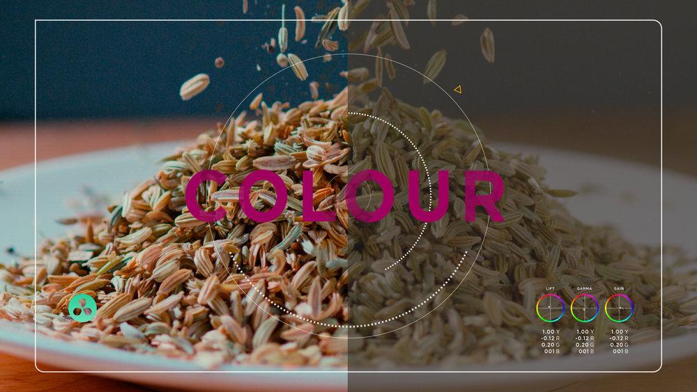 MPC001_HQ_Artwork_colour_v8.jpg