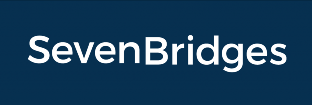 Seven Bridges Navy Logo.png