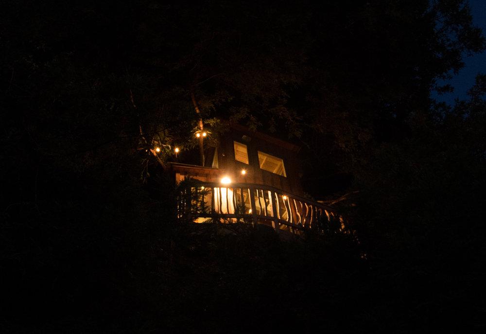 treehouse night.jpg