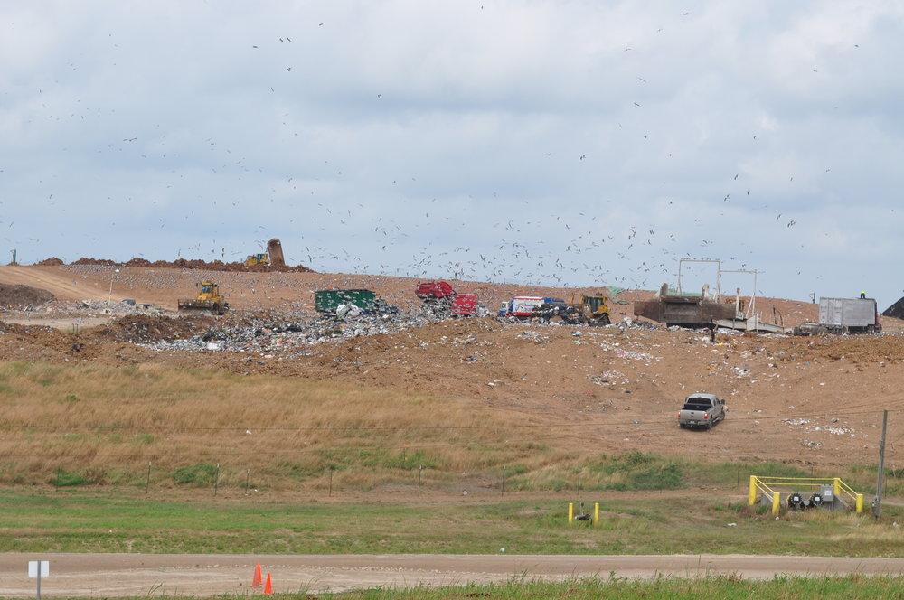 landfill 3.JPG