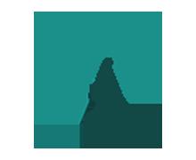Worth Collective INC's Company logo
