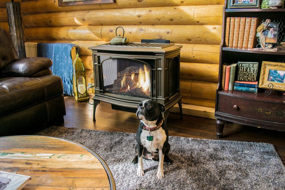 Kozy Heat  Birchwood - Evergreen, CO