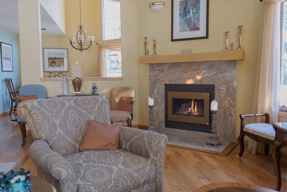 FireplaceX DVS