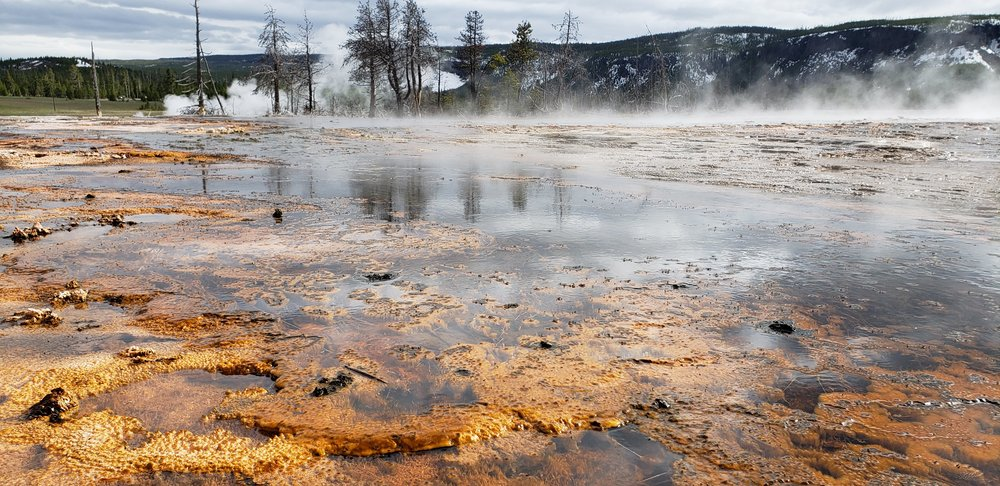 Upper Geyser Basin - Yellowstone National Park