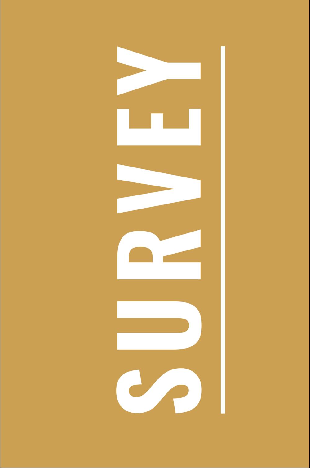 Survey_Box-01.png