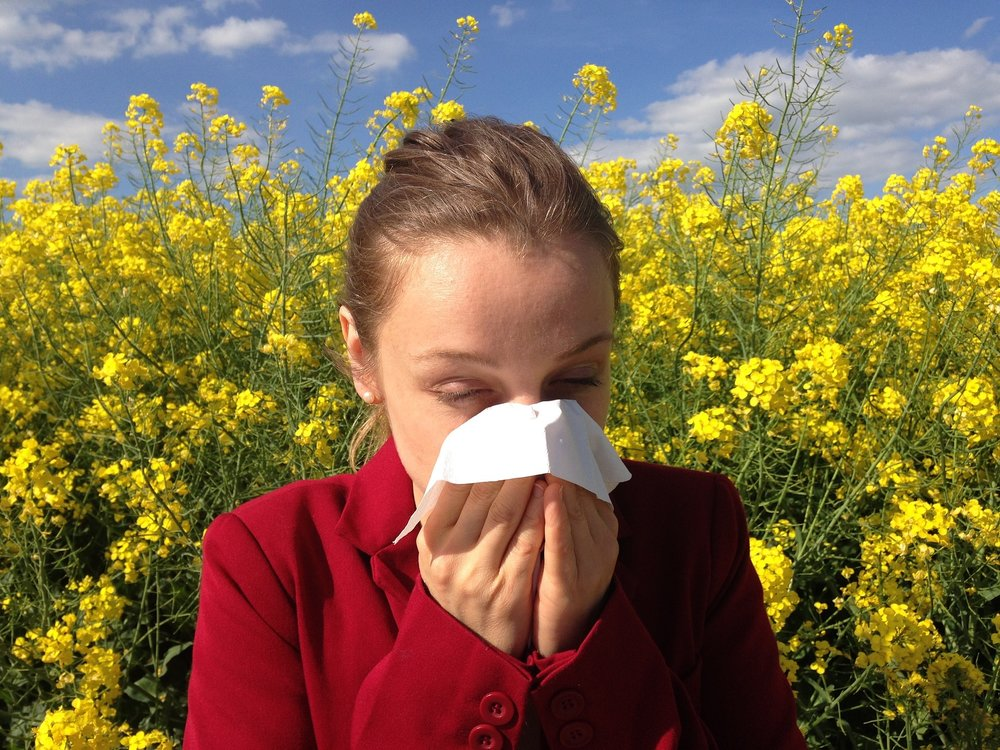 Taking a Prebiotic Approach To Early Immunomodulation for Allergy Prevention -