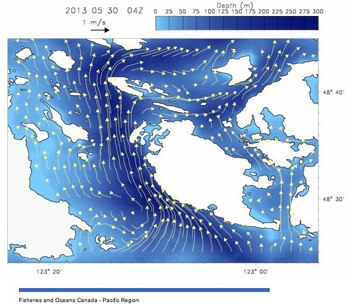 dfo currents