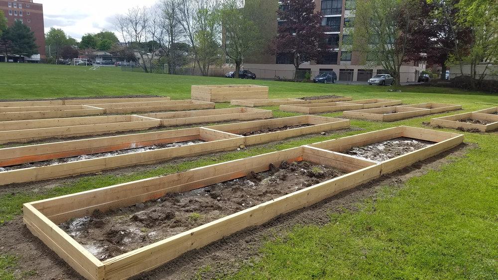 Community Garden - Beginning.jpg