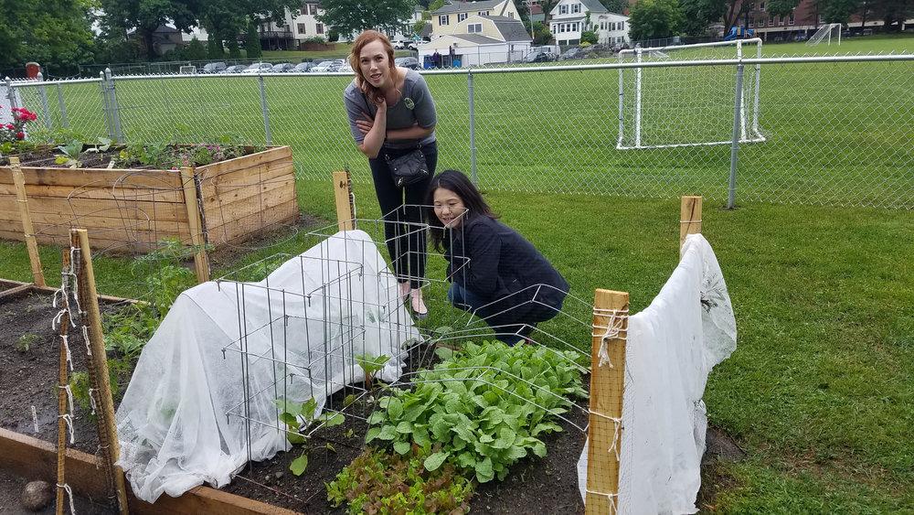 Community Garden - Checking on crops.jpg