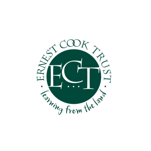 The Ernest Cook Trust is a UK charity at the forefront of outdoor learning, which provided the BSA with a grant to develop a CREST Star activity that enables young people to discover science outdoors.