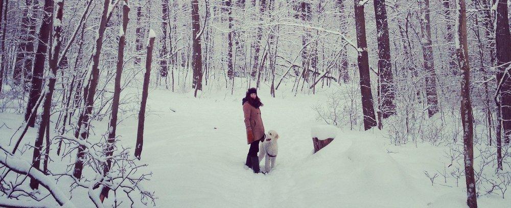 Breithaupt Park in Winter.jpg