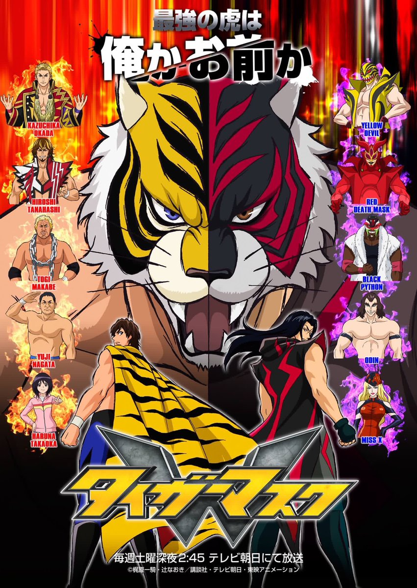 tiger-mask.jpg