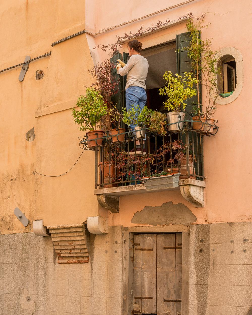Window Garden Along Rio del Ognissanti, Venice