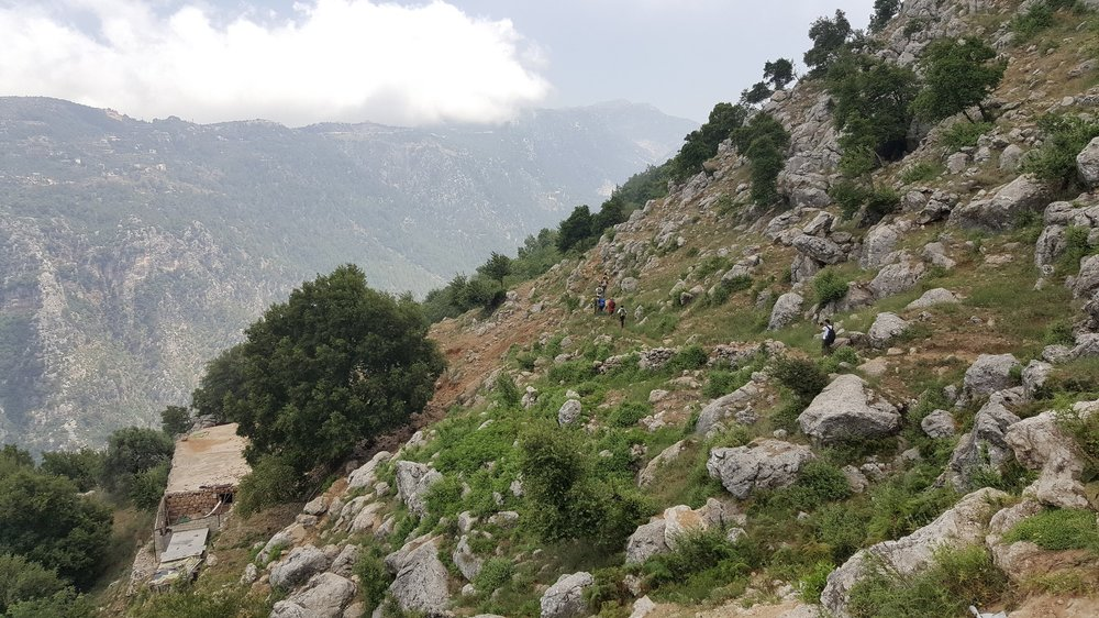 jabal moussa biosphere reserve, lebanon -