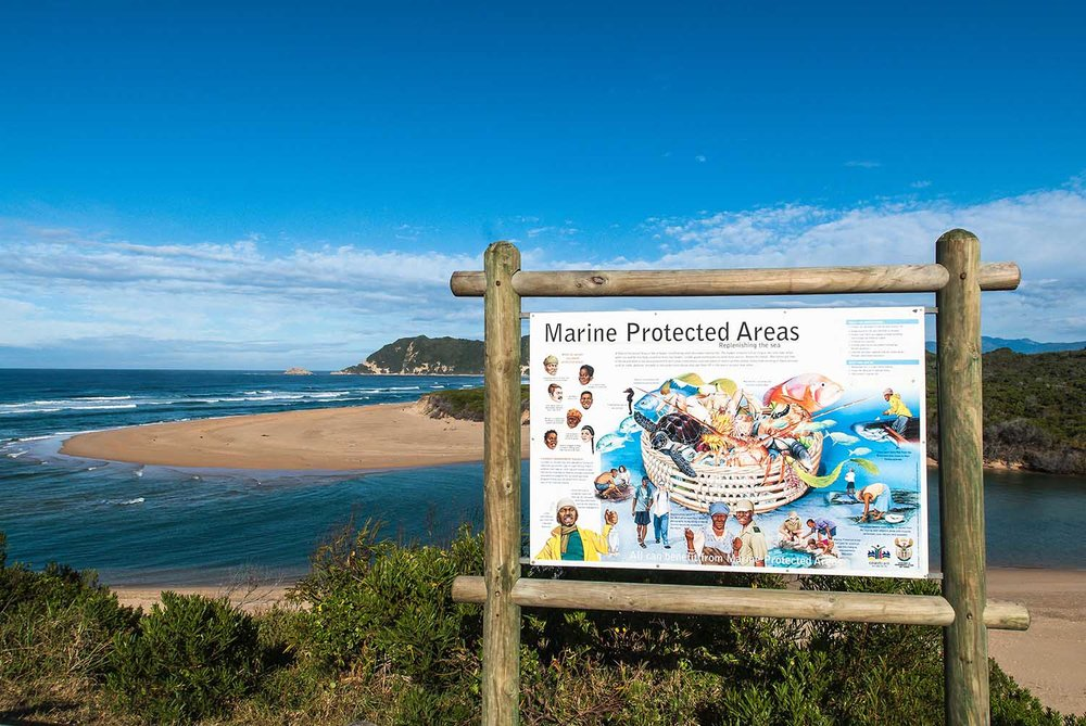 marine-protected-areas-south-africa-protetion-PeterChadwick.jpg