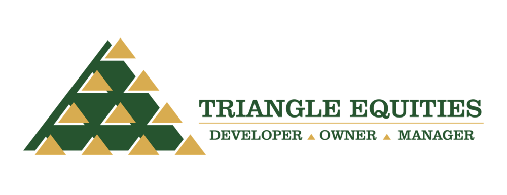 Triangle Equities Logo (Primary).png