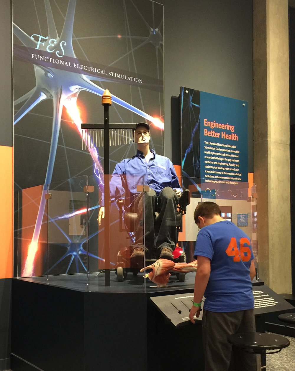 Functional Electrical Stimulation Robot Exhibit