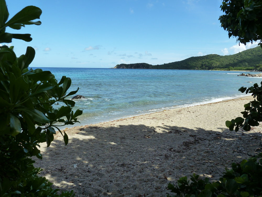 Nail Bay Beach is normally secluded