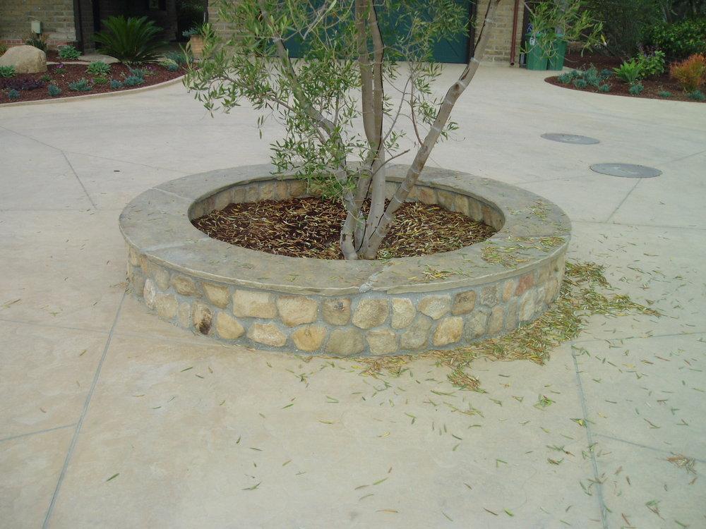 Kelmenson driveway planter.JPG