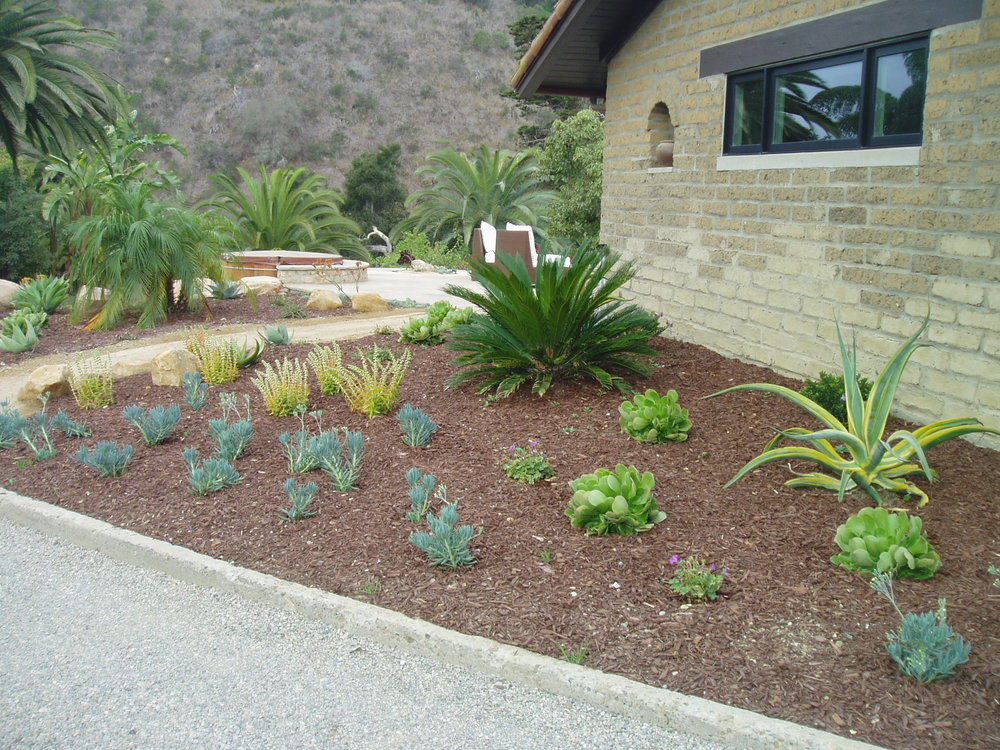 Kelmenson landscaping 2.JPG