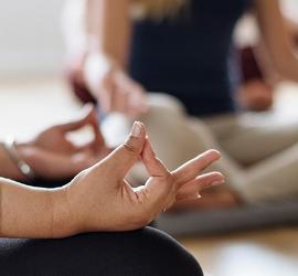 yoga mudra.jpg