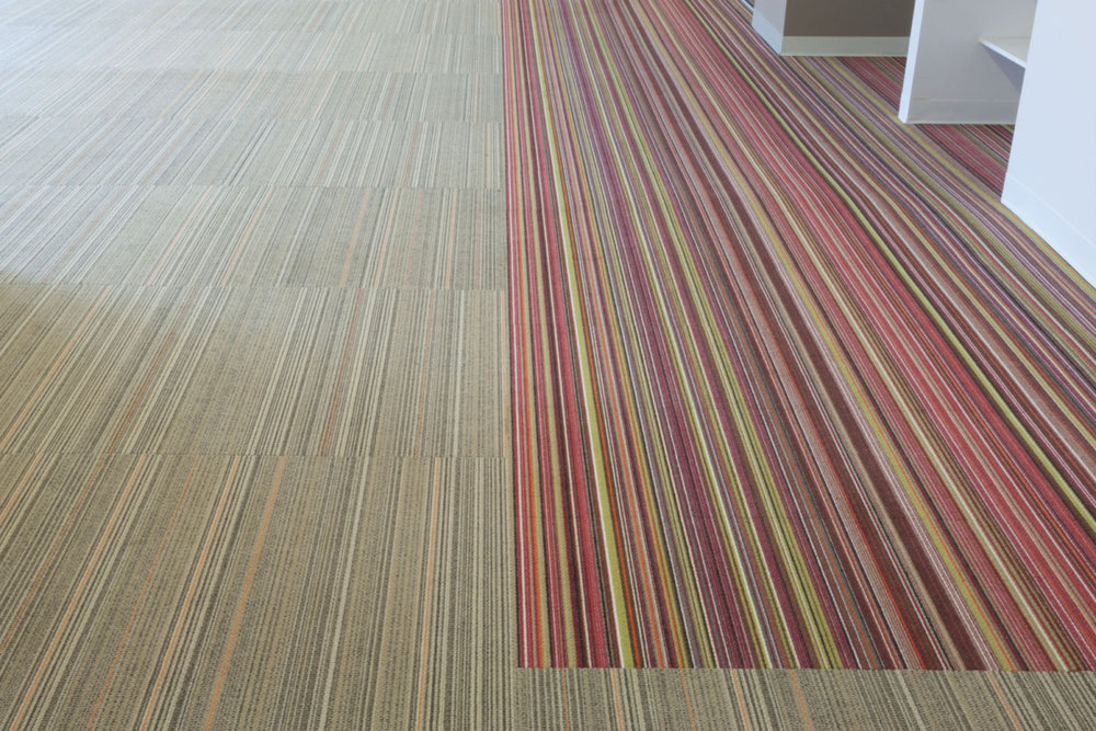 haynes-ecologic-carpeting-1200x800.jpg