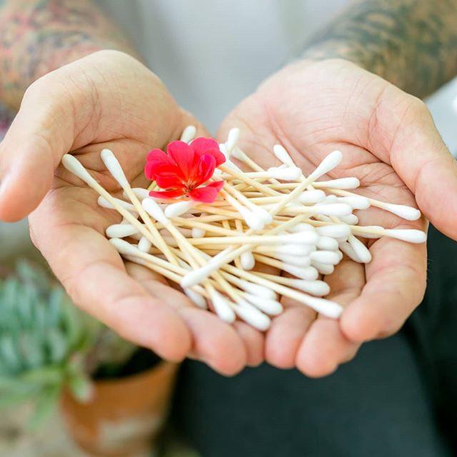 These @wasserneutral Hydrophil Organic Cotton Swabs are the perfect plastic free stocking fillers. https://re-phyll.co.uk/skincare/ 💚🌿🐳#noplastic #organicskincare #sustainable #ethicalbeauty #crueltyfreebeauty #plasticfree #ecofriendly #blueplanet2 #plasticocean #bamboo #zerowasteuk #zerowastebathroom #zerowaste