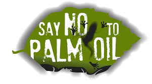 say no to palm oil.jpg