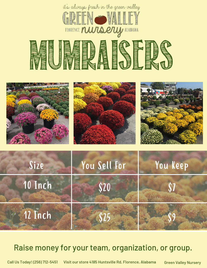 MUMRAISERS - Flyer for Print Out.png