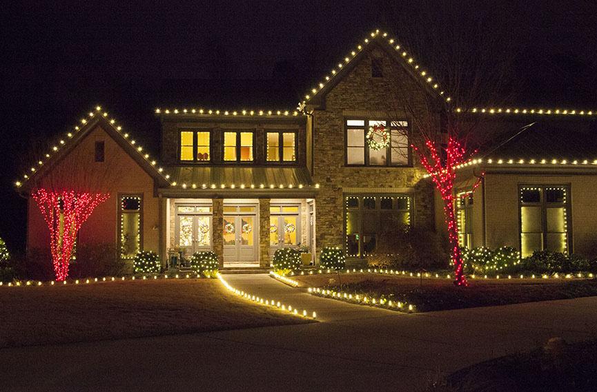white-led-roof-lights-0582.jpg