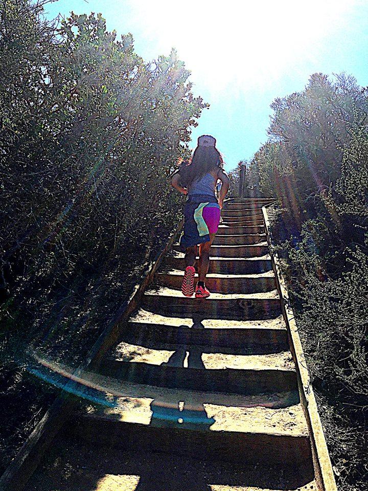 Torrey Pines_uphill stairs.jpg