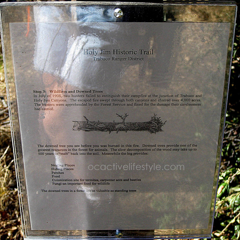 One of the Trail Plaques along the trail..