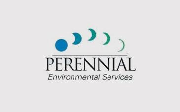 Partner logos Perennial.jpg