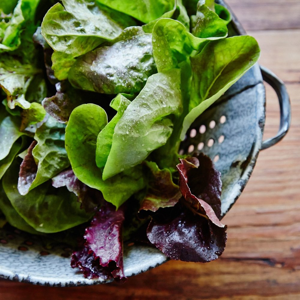 Salad Green Mixture.jpg