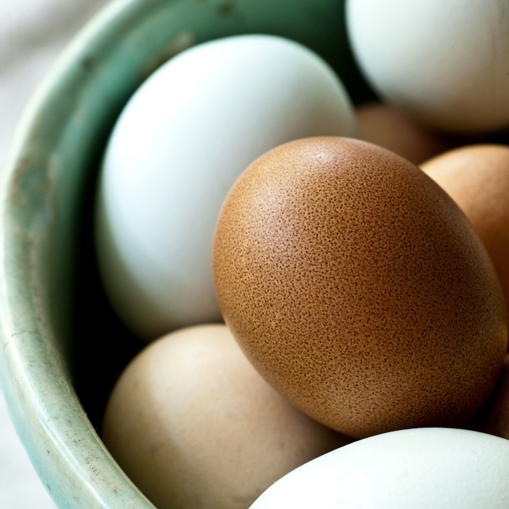 eggs from the farmer's market-sara_shoot2_0144 copy.jpg