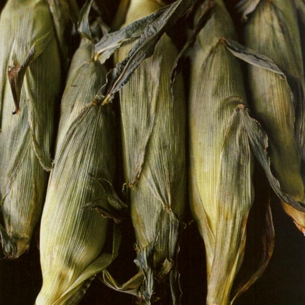 Corn on the Cob Your Way.jpg