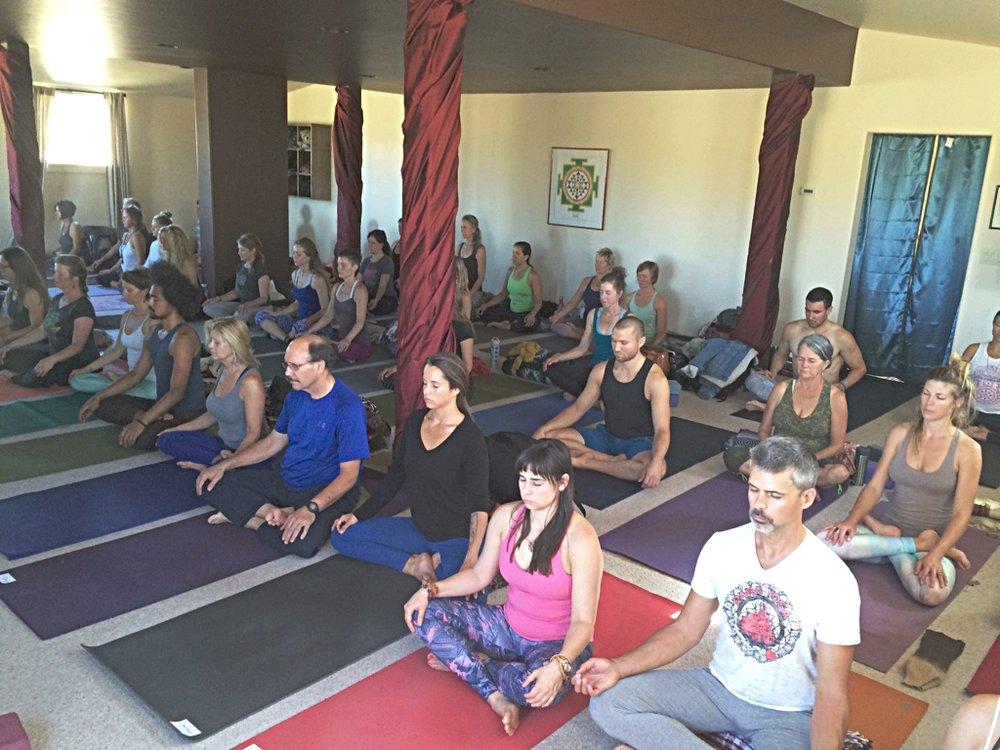 YogaTraining.photo.jpeg