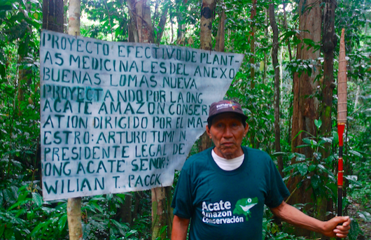 The Guardian - Amazon tribe saves plant lore with 'healing forests' and encyclopedia