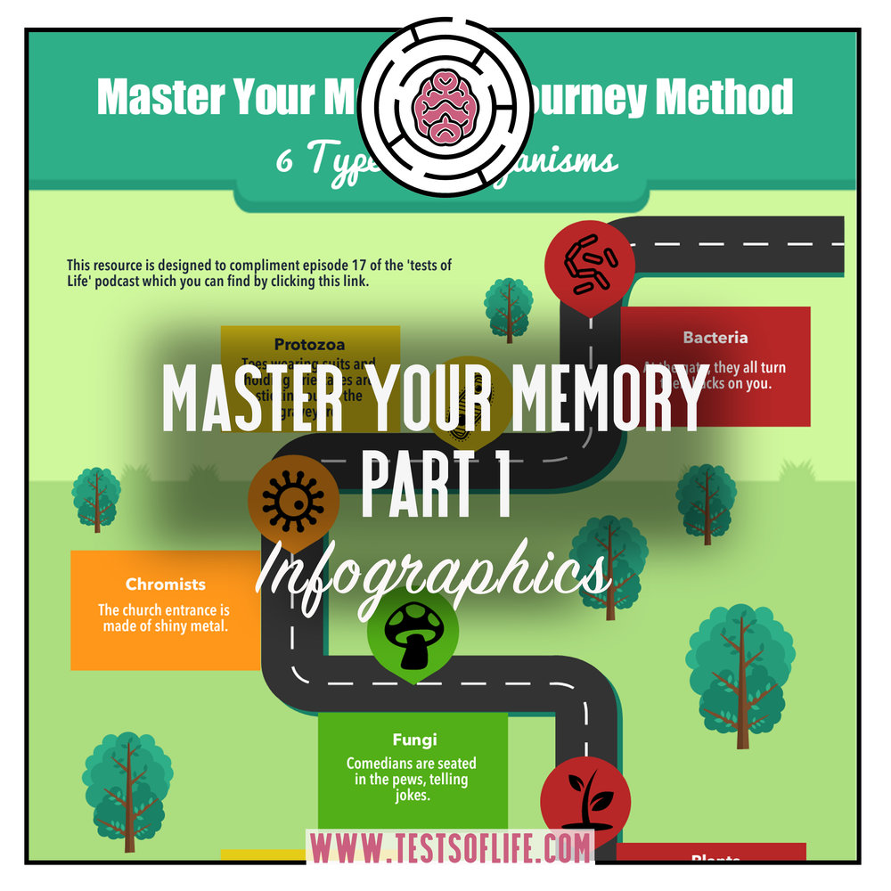 ToL master your memory IG.jpg