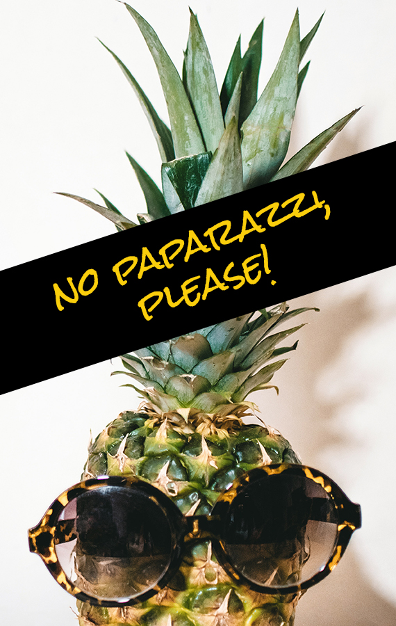 pineapple-no-paparazzi.jpg