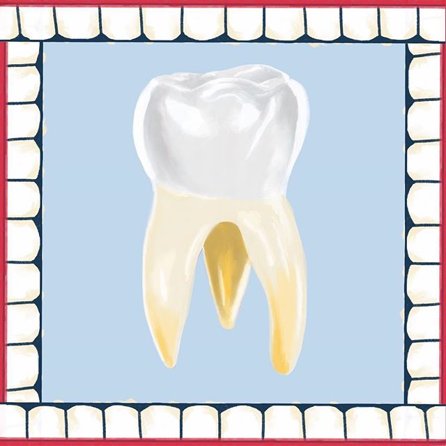 Portrait of a #Tooth  #illustration #illustrationartists #illustrations #cutedrawings #procreate #procreateapp #drawing #drawings #art #artistsoninstagram #artist #artsy #dentist #dentistry #dentistlife #mouth #wisdomtooth #extraction #teeth #teethcleaning #fun #artwork #artworks #toothfairy #sweettooth