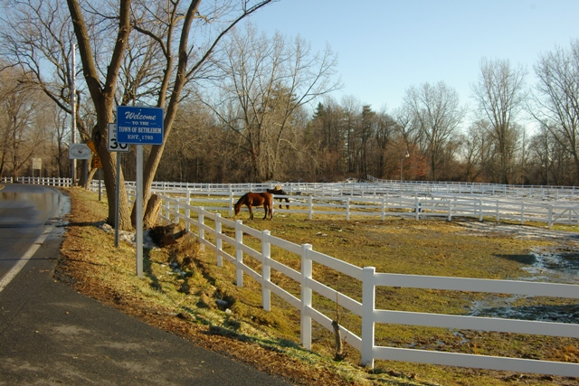 Krumkill Stables is a safe place for all, horses and riders.