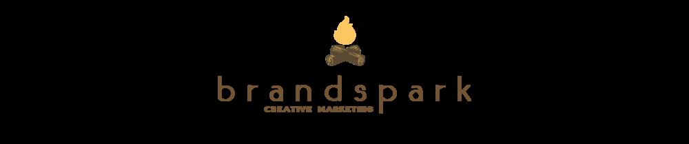 brandspark concept final web copy.png