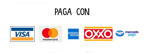 Elementos_Pg_ANimacion_pagoA.png