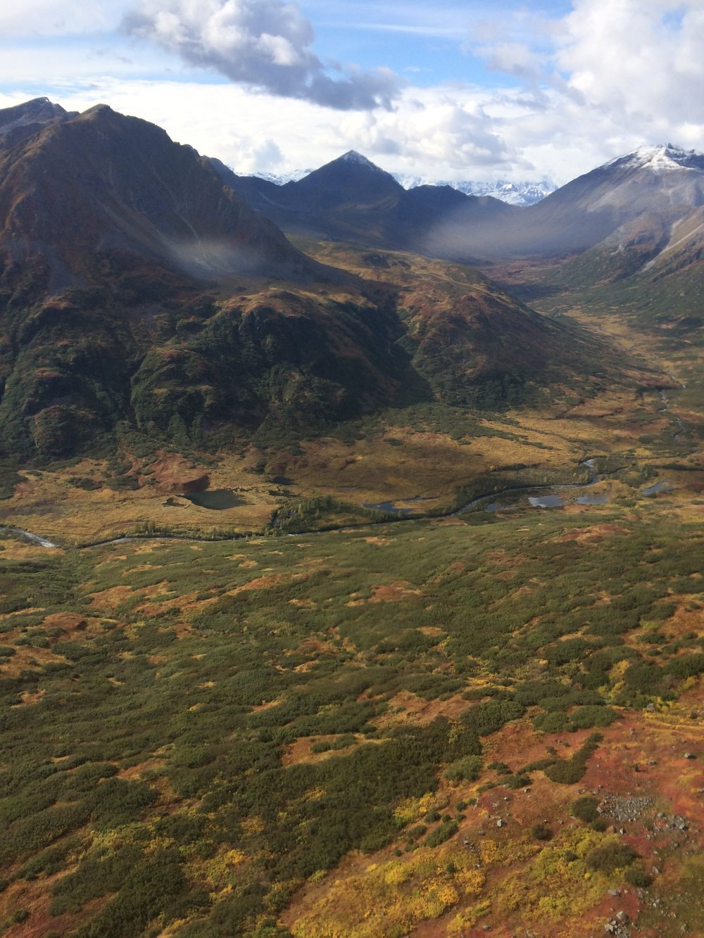 Denali National Park in autumn  (photo credit: J. Yordy)