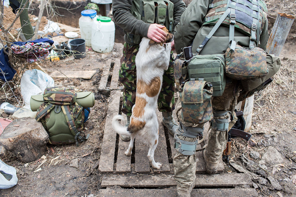 Pets are a big part of life on the front lines in Donetsk. It was not hard to see how much the animals are loved, and cared for, even in war.