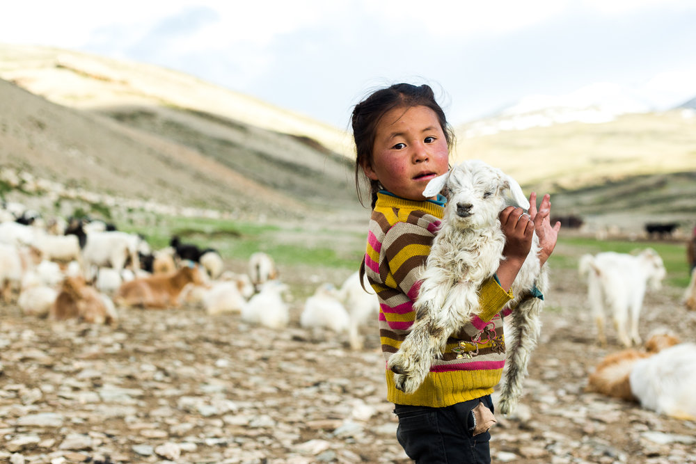 Irie_Langlois_Ladakh4.jpg
